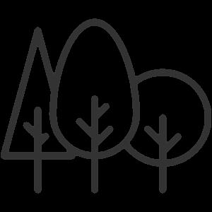 Drzewa i krzewy szczepione
